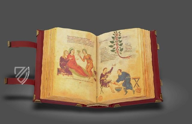 Codex of Medicine of Frederick II