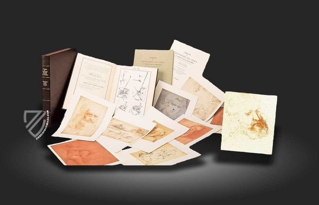 Drawings of Leonardo da Vinci and his circle - Biblioteca Reale in Turin