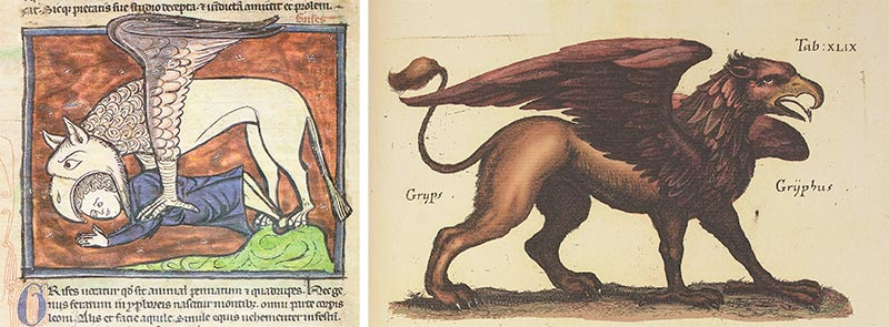 Left: Westminster Abbey Bestiary, York, England) — ca. 1275-1290; Right: Historia Naturalis: De Quadrupedibus, Frankfurt, Germany or Amsterdam, Netherlands — 1652